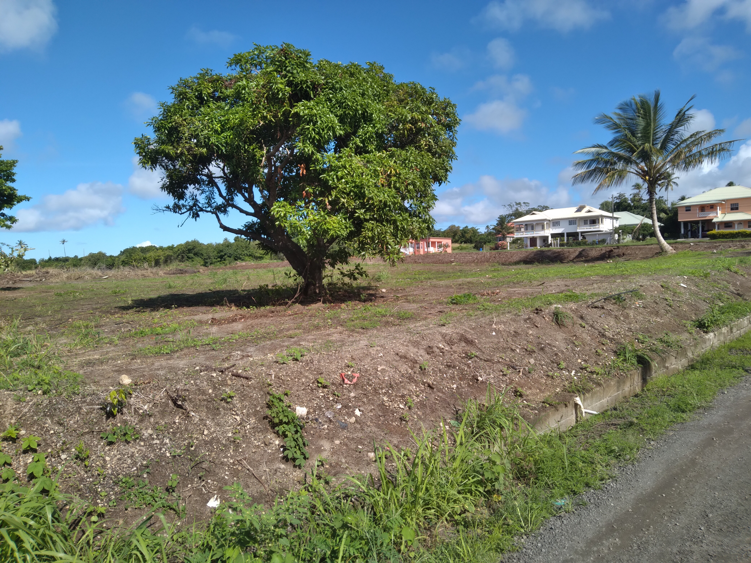open flat land for sale in st lucia
